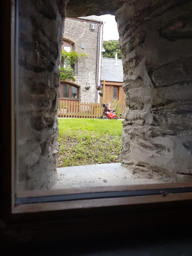 3. Otter Pool Barn Rosie through window
